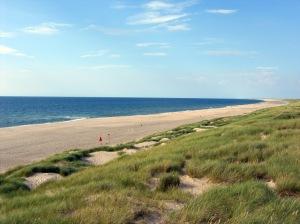 Strand, Dünen und Gras